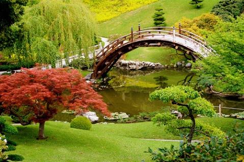 magic-garden